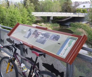 Guadalupe River Trail, downtown San Jose