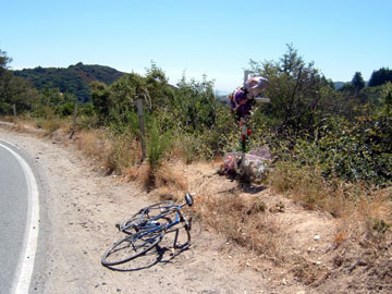 Highway 9 accident site