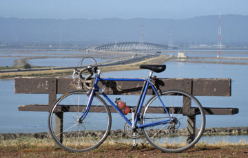 Dumbarton Bridge from Quarry Trail