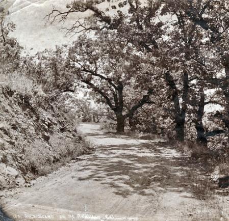 Mt. Hamilton Road