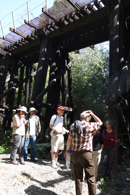A railroad trestle on a part of the  Los Gatos Creek Trail is slated for removal.