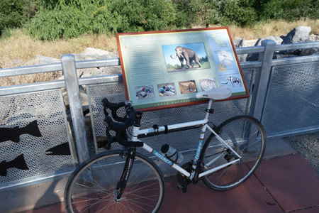 Lupe the mammoth has an interpretive sign at Trimble Road.