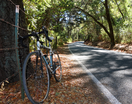 Redwood Retreat Road off Watsonville Road doesn't go anywhere, but it's a nice ride for about four miles.