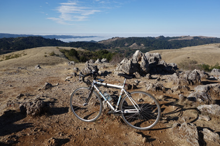 Montebello summit had plenty of sun today. Not so north of Page Mill. Fog socked in Skyline.