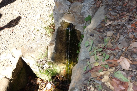 Drinkable water at the spring.