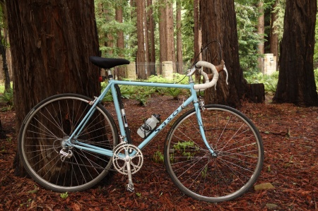 Portola Valley glamour shot of a 1987 Saso.