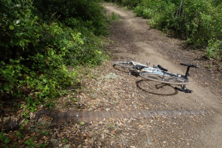 Alpine Road needs some culvert cleaning. Otherwise big washouts will continue to plague the trail.