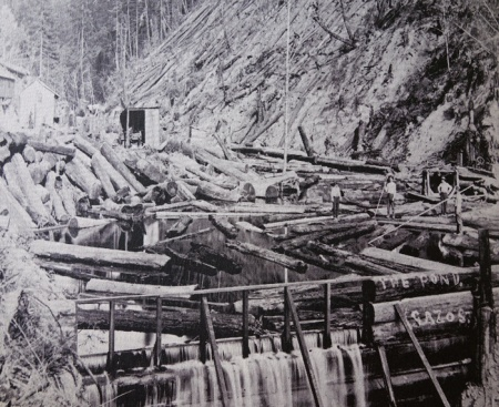 Bloom Mill about 1907. From Sawmills in the Redwoods.