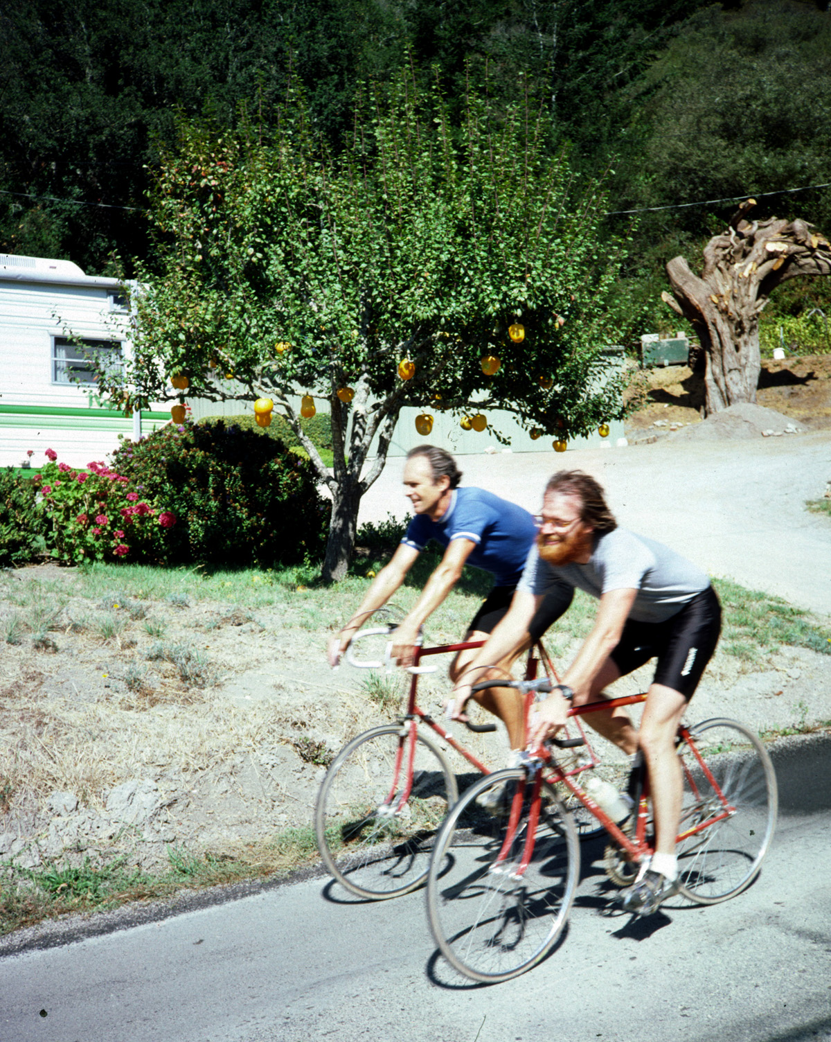 Jobst Brandt and Mike Higgins pass by the pumpkin tree on Pescadero Road in 1984.