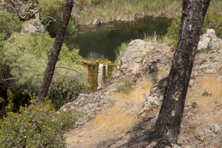 This is the world's smallest concrete dam just off Mt. Hamilton Road.
