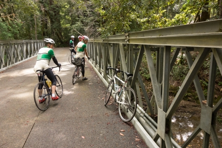 Pescadero Creek Bridge. From left, Steve Lubin, John Woodfill, Millo Fenzi, Matt Forrester.
