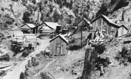 Borden & Hatch Mill  in the 1880s, near where I took the first photo, top of page (From Sawmills in the Redwoods).